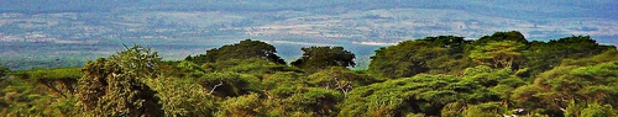 Barnabas Africa